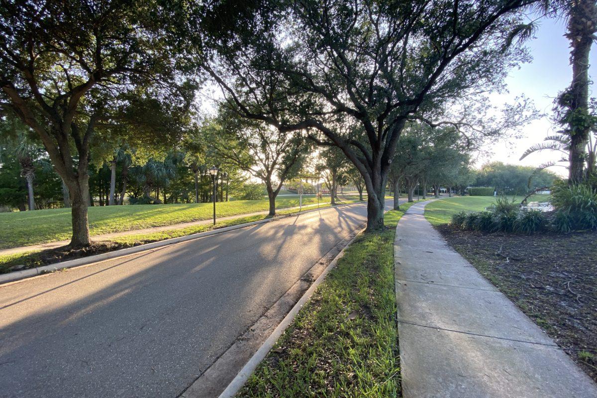 Road leading into the island at Abacoa neighborhood Jupiter florida